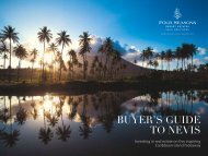 Buyers-Guide-Nevis-Teaser-Guide-Final