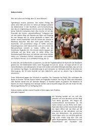 Hakuna matata - Dr. Birgit Klaubert
