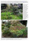 Bulb Log Diary - Page 2