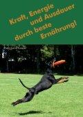 BESTE KUMPELS MAGAZIN für Tierfreunde im Revier - Page 2