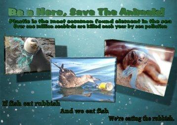 save animals Courtney Daykin