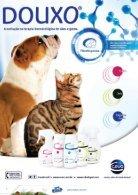 Revista_PetCamp_9_IMPRESSAO - Page 4