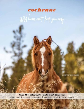 2016 Alternate Routes Wild Horses Can't Keep You Away