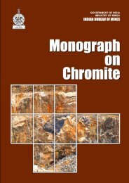 Monograph_Chromite