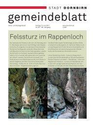 Felssturz im Rappenloch