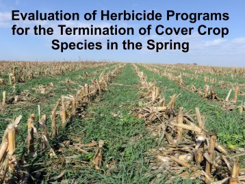 for the Termination of Cover Crop Species in the Spring