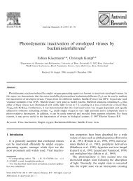 Photodynamic inactivation of enveloped viruses by ...