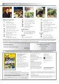 amministrazione - Page 3