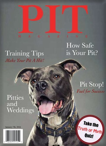Pit Magazine Final