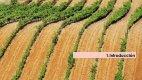 y museos del vino asociados a las Rutas del Vino de España 2015 - Page 3
