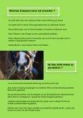 Coaching mit Pferden - Seite 5