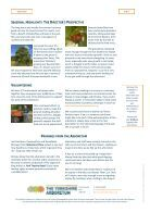 Yorkshire Arboretum Newsletter - Issue 2 - August 2013 - Page 4