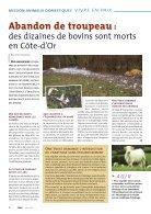 Noé 54 - Page 6