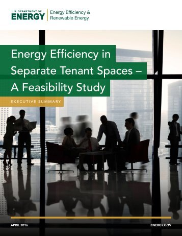 Energy Efficiency in Separate Tenant Spaces – A Feasibility Study