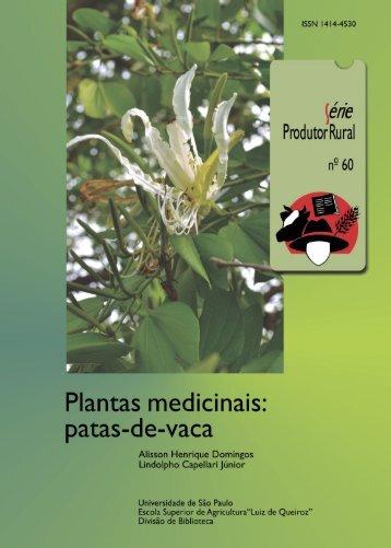 Plantas medicinais patas-de-vaca