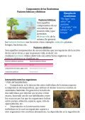 Revista Ecosistema - Page 5