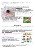 Revista Ecosistema - Page 6