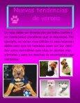 Publicación1 - Page 7