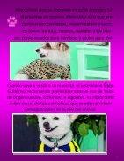 Publicación1 - Page 6