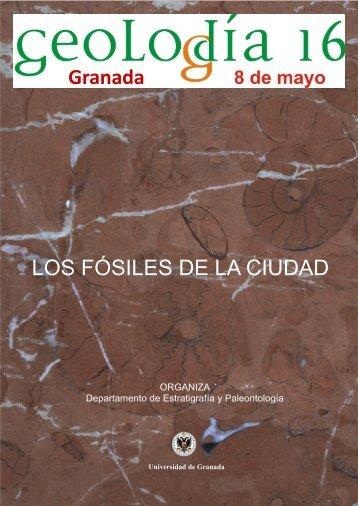 Granada LOS FÓSILES DE LA CIUDAD