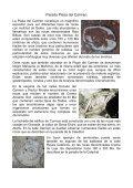 Granada LOS FÓSILES DE LA CIUDAD - Page 4