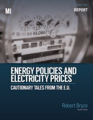 ENERGY POLICIES AND ELECTRICITY PRICES
