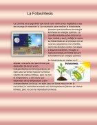 LA BIOLOGIA INTEGRAL - Page 3