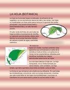 LA BIOLOGIA INTEGRAL - Page 6