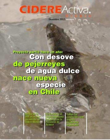 REVISTA-ACTIVA BIOBIO-07