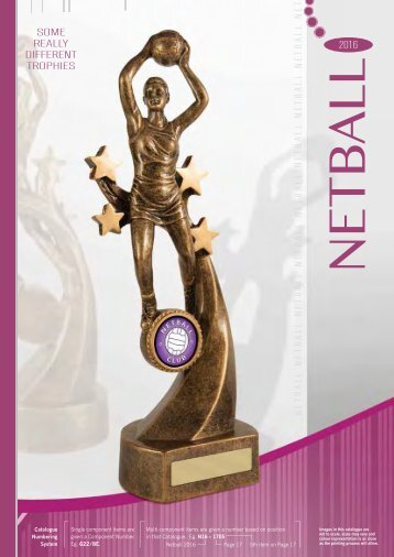 Some Really Different Trophies - Netball 2016
