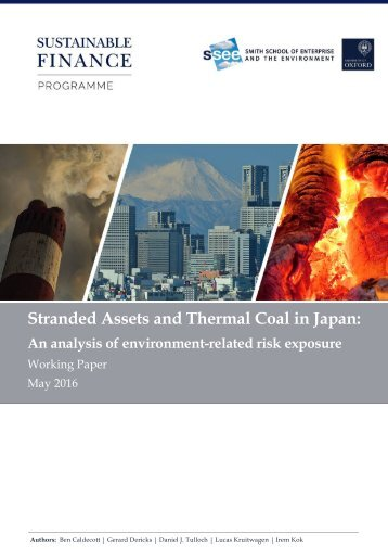 Stranded Assets and Thermal Coal in Japan