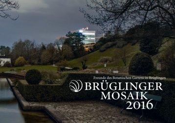 Brüglinger Mosaik 2016