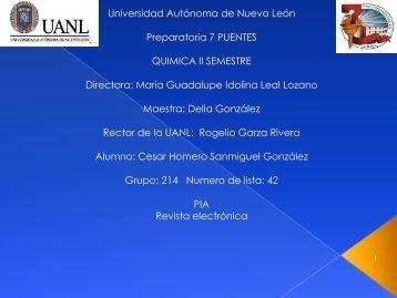 Pia Quimica- Revista electronica-42-214