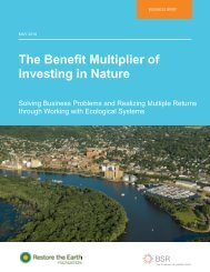 The Benefit Multiplier of Investing in Nature