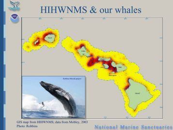 David Mattila - International Committee on Marine Mammal ...