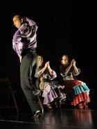 Fotos pessoais de dança - Page 5