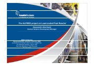 The ALFRED project on Lead-cooled Fast Reactor - snetp