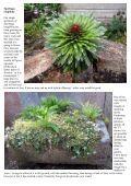 Bulb Log Diary - Page 6