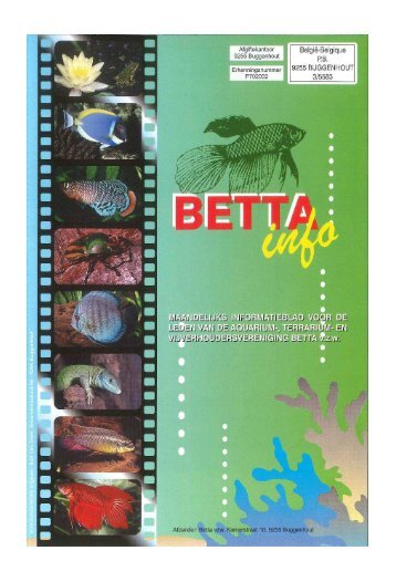 2016 - 05 - Betta-Info