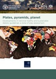 Plates pyramids planet