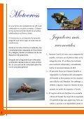 Revista-Producto-a-Evaluar - Page 4