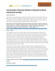 Fermentation Chemicals Market is Expected to Reach US$ 66.0 Bn by 2022
