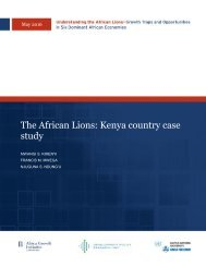 The African Lions Kenya country case study