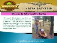 Tree Service in Dallas|Robertson Tree Service