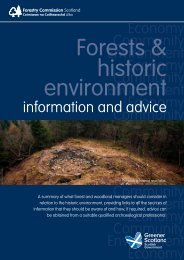 Forests & historic environment