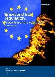 Brexit and EU regulation