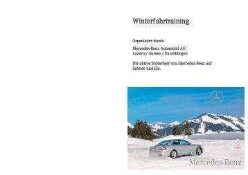 Winterfahrtraining 2010 in Ambri