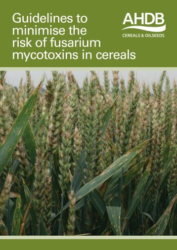 Guidelines to minimise the risk of fusarium mycotoxins in cereals