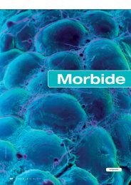 Morbide Adiposit