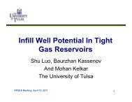 Infill Well Potential In Tight Gas Reservoirs - Rpsea